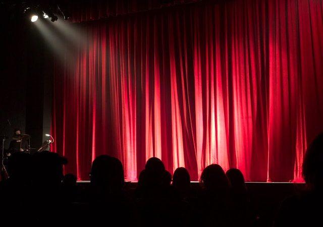 Theatre audience