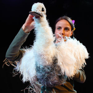 The Goose Who Flew