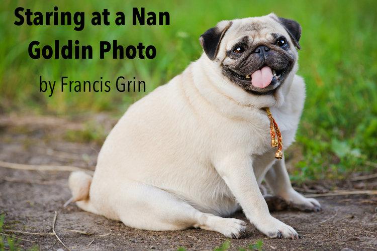 Staring at a Nan Goldin Photo Thumbnail
