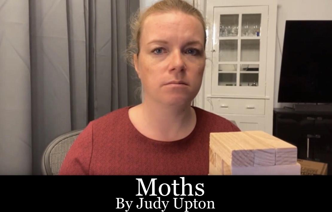 Moths Thumbnail